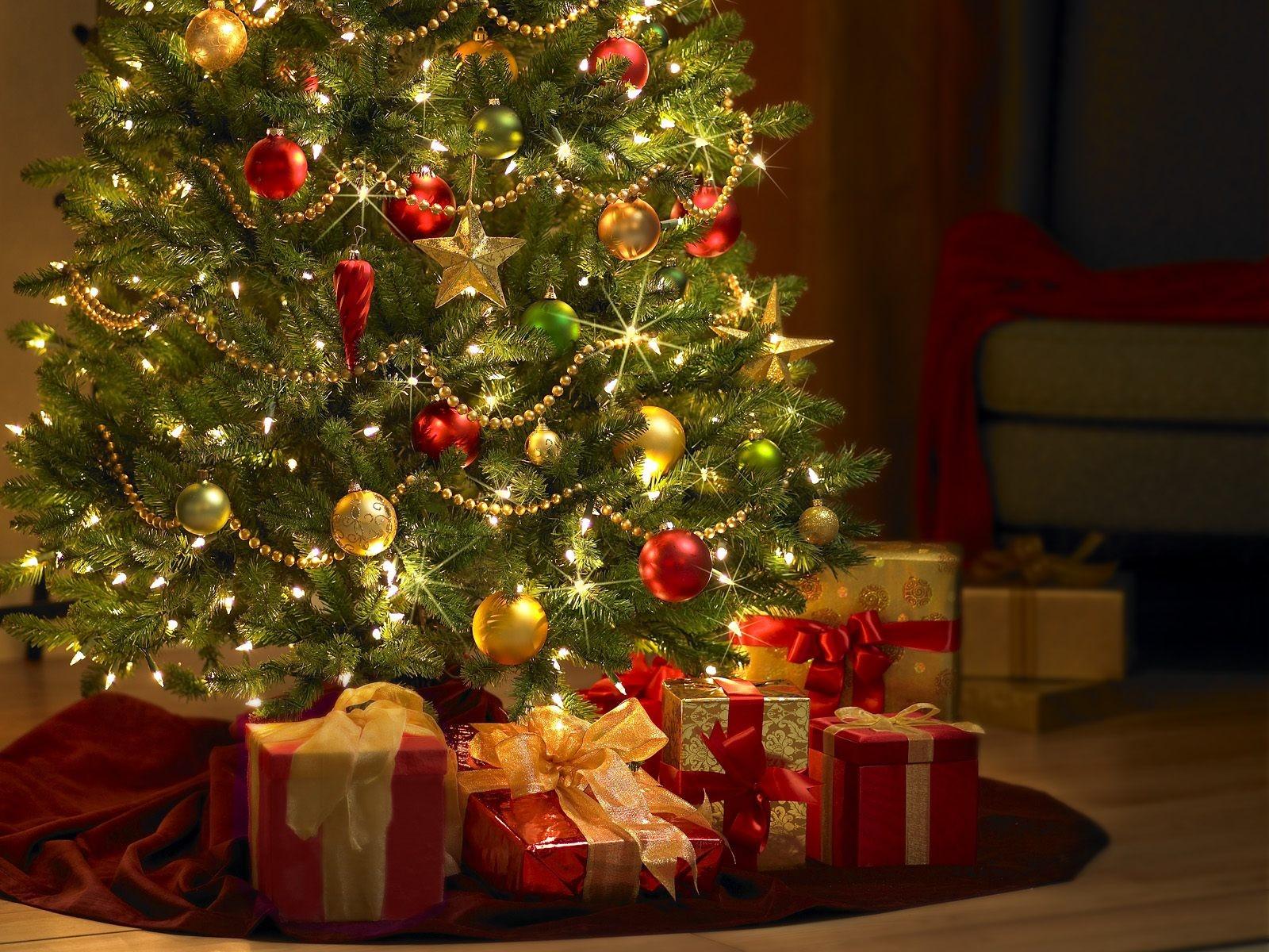 Куда поставить елку, чтобы она принесла удачу в 2018 году