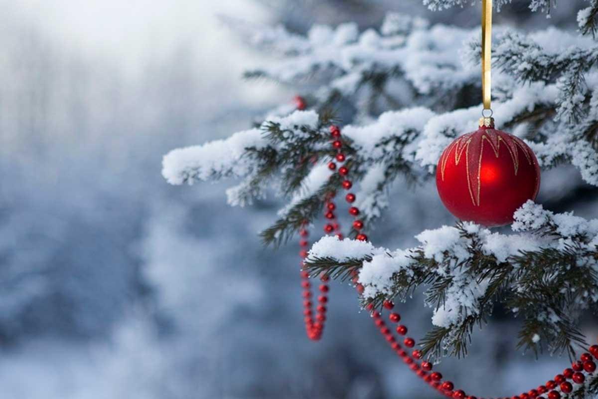 Поздравление главы города  Е. КАДЫШЕВА и главы администрации А. ЛАДЫКОВА с Новым годом и Рождеством